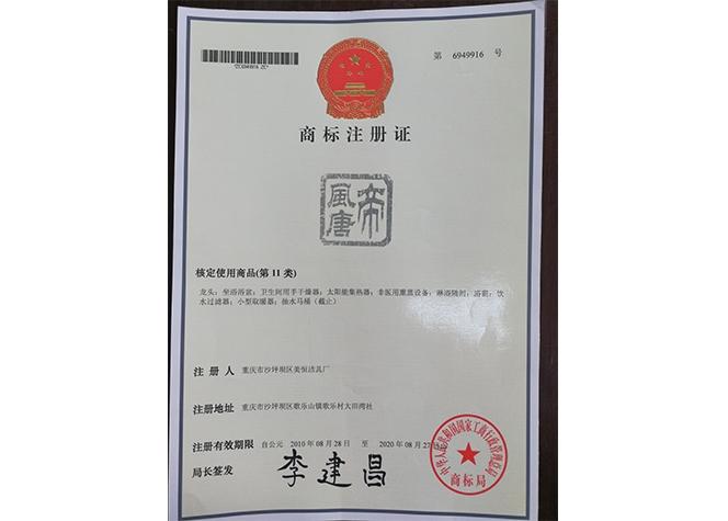 帝风唐商标注册证书